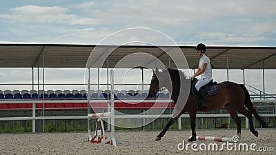 Reiten Reiten braunes Pferd Springzaun im Freien Sandparkour Arena stock footage