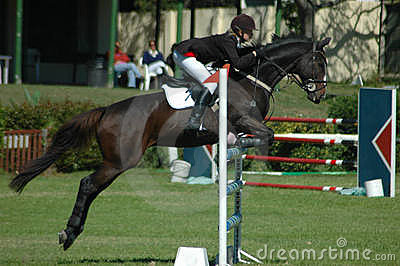 Reitersport