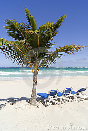Relax on caribbean beach