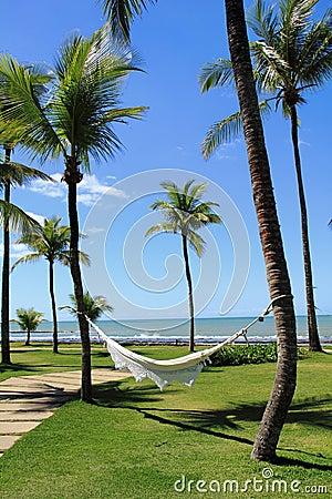 Relax on a hammock at Arraial d Ajuda Eco Resort