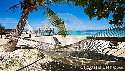 Relax on a tropical beach!