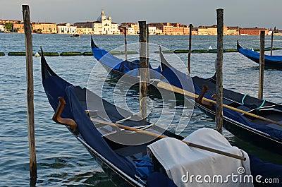 Relaxing evening in gondolas harbor, Venice