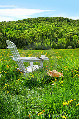Free Relaxing On A Summer Chair Royalty Free Stock Photo - 5280745