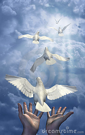 Free Releasing The Doves Stock Photo - 2086650