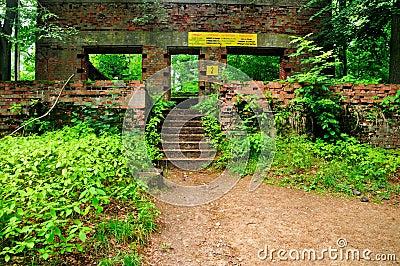 Remains of Bunkers of Wolfsschanze