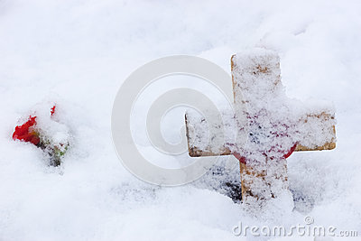 Remembrance Cross With Poppy In The Snow