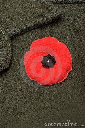 Free Remembrance Day Stock Photography - 7136732