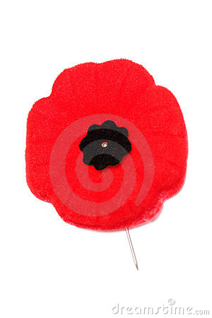 Free Remembrance Day Poppy Stock Images - 7136914