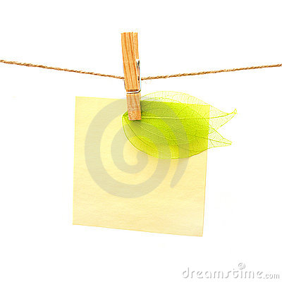 Reminder and green leaf with clothes peg. Series