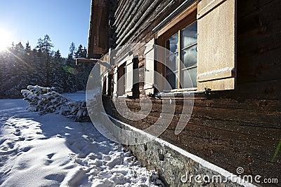 Remote log cabin