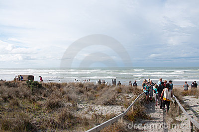 Rena oil spill clean up workers Editorial Stock Image