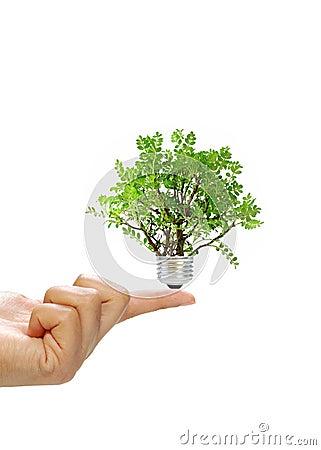 Free Renewable Energy Concept Royalty Free Stock Photo - 16137535