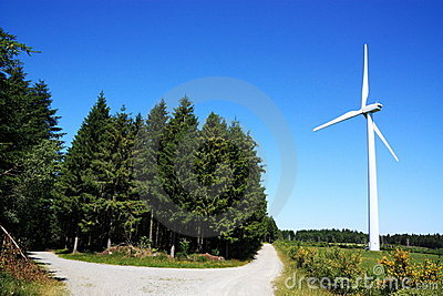 Renewable Energy Wind and Wood