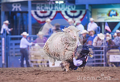 Reno Rodeo Editorial Image