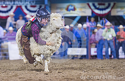 Reno Rodeo Editorial Photography