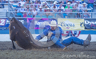 Reno Rodeo Editorial Stock Image