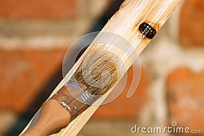 Renovating wood