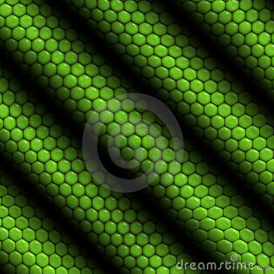 Free Reptile Skin Iguana Striped Stock Images - 3269414