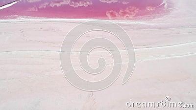 Reserva natural lago de sal rosa de harmonia pacífica filme