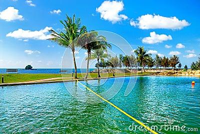 Resort Swimming Pool 1