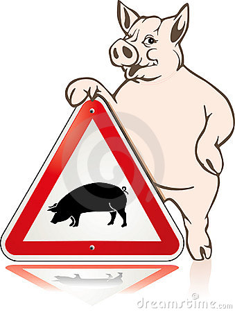 Respect pig