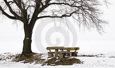 Rest Seats in a winter Landscape