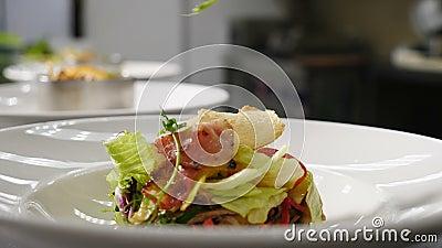 Restaurangssalad Video om matlagning Stängning av kock med stigande kulinariesring Sallad Shot i 4k lager videofilmer