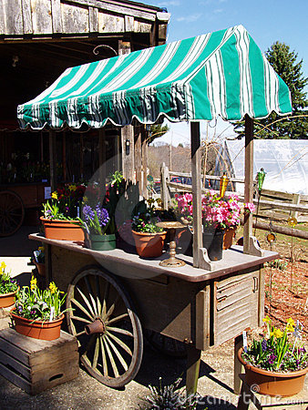 Retail Garden Cart Royalty Free Stock Images Image 662179