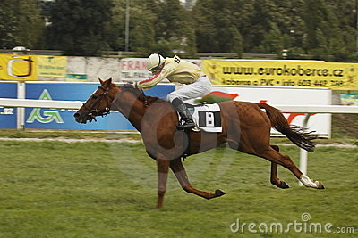 Retourn in St. Leger horse racing Editorial Stock Image