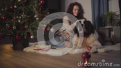 Retrato da sorridente garota caucasiana sentada com animais de estimação em casa na véspera do Ano Novo Lanterna com vela de pé n vídeos de arquivo