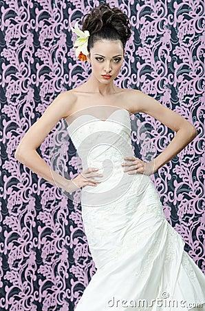 Retrato del brunette de la novia