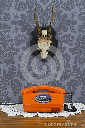 Retro communication on floral wallpaper and antler