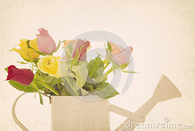 Retro filtered roses flower arrangement
