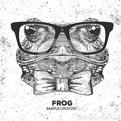 Free Retro Hipster Animal Frog. Hand Drawing Muzzle Of Frog Royalty Free Stock Image - 98806206