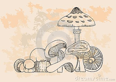 Retro Mushrooms set