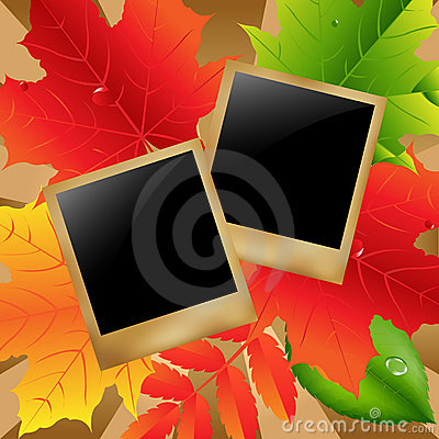 Retro Photo With Leaves. Vector