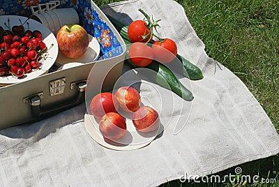 Retro-picnic basket 2