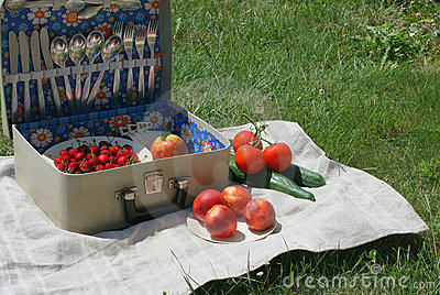 Retro-picnic basket 3