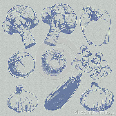 Retro sketch vegetables pattern