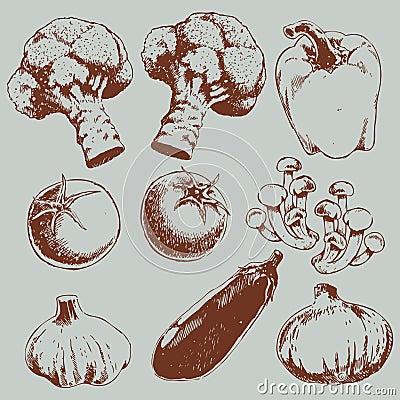 Retro sketch vegetables pattern