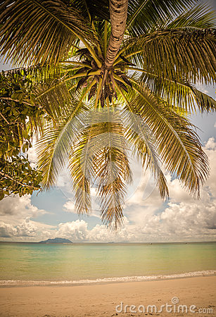 Free Retro Style Image Of Tropical Island Beach Stock Images - 54311214