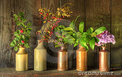 Retro style still life of dried flowers in vases