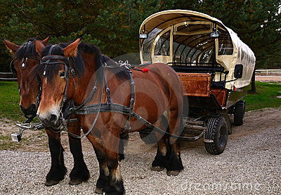 Retro style transport