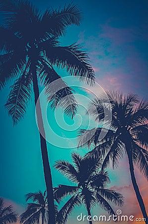 Free Retro Sunset Hawaii Palm Trees Royalty Free Stock Photos - 41954768