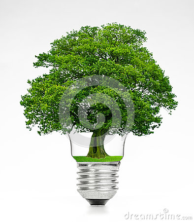 Free Retro Vintage Light Bulb With Green Tree On Top On White Background Stock Images - 79615494