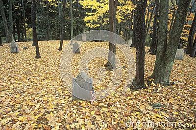 Revolutionary War Cemetery Editorial Image
