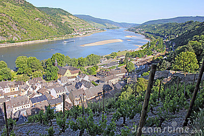 Rhine valley from above