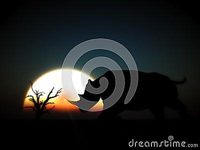 Rhino Wildlife 9