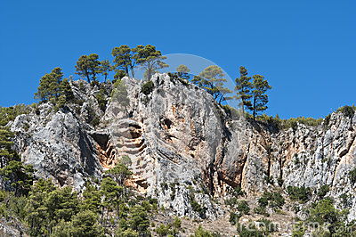 Rib-shaped rocks