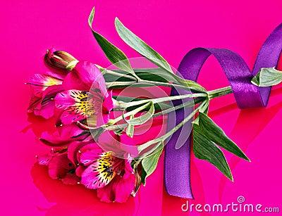 Alstroemeria flower and ribbon